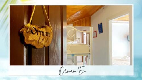 orman-6